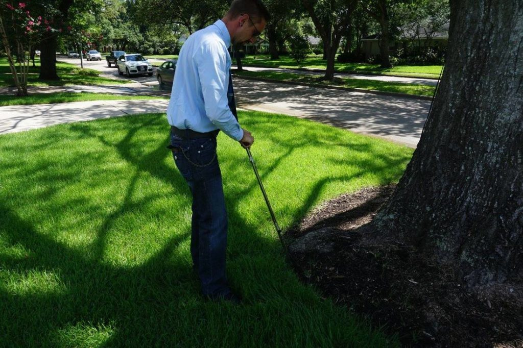 Arborist-Consultations-San Bernardino Tree Trimming and Stump Grinding Services-We Offer Tree Trimming Services, Tree Removal, Tree Pruning, Tree Cutting, Residential and Commercial Tree Trimming Services, Storm Damage, Emergency Tree Removal, Land Clearing, Tree Companies, Tree Care Service, Stump Grinding, and we're the Best Tree Trimming Company Near You Guaranteed!