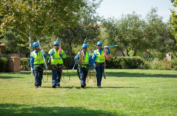 Keenbrook-San Bernardino Tree Trimming and Stump Grinding Services-We Offer Tree Trimming Services, Tree Removal, Tree Pruning, Tree Cutting, Residential and Commercial Tree Trimming Services, Storm Damage, Emergency Tree Removal, Land Clearing, Tree Companies, Tree Care Service, Stump Grinding, and we're the Best Tree Trimming Company Near You Guaranteed!